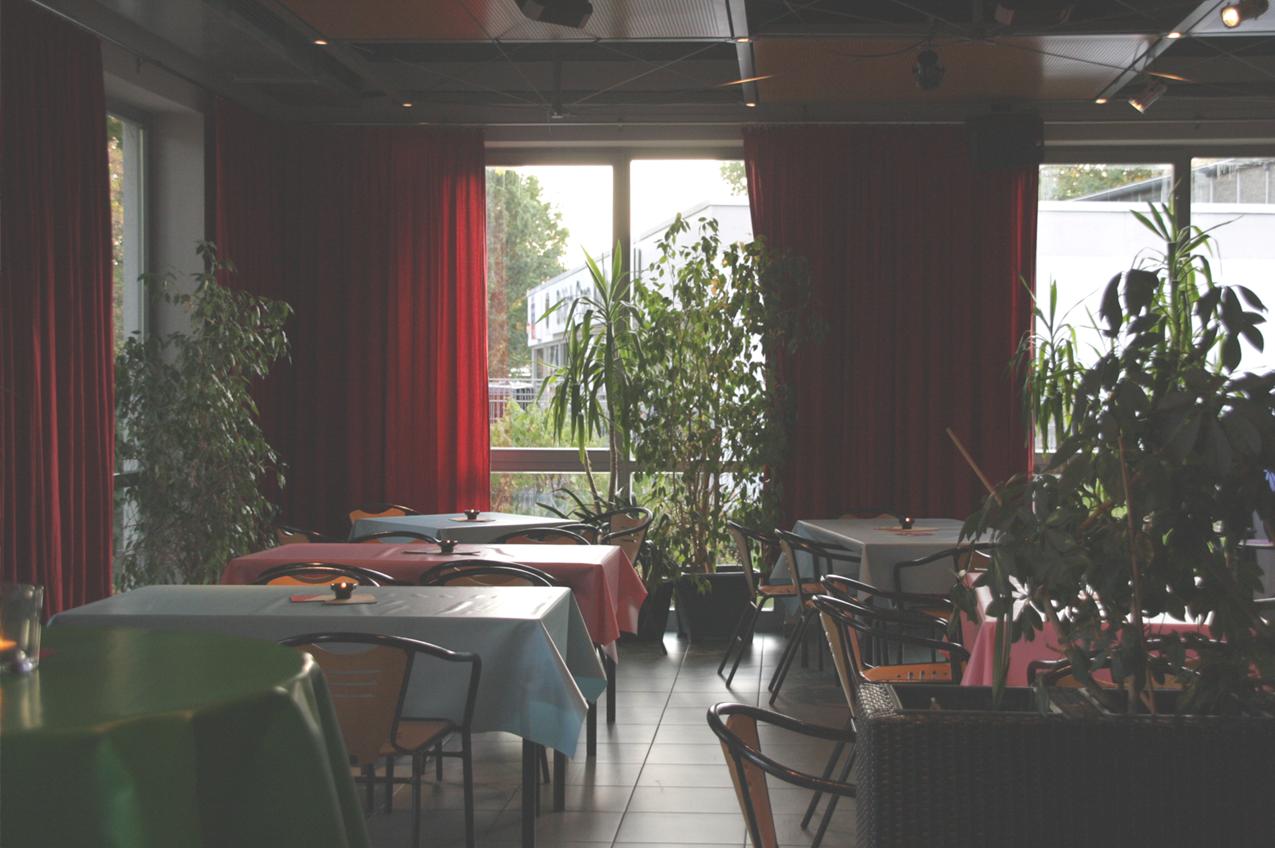 Foto von Thekenbereich. Sechs Tische mit Stühlen sind im Raum verteilt. Viele Pflanzen stehen vor großen Fenstern.